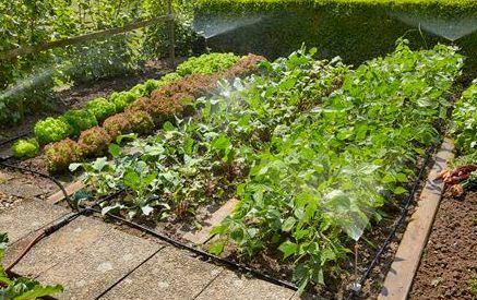 Gardena Startset voor Bloembedden en Moestuinen