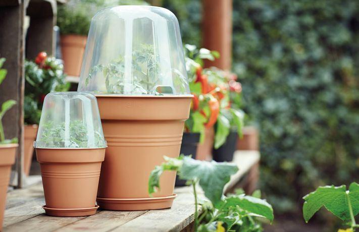 Elho Green Basics Grow House Rond 17cm
