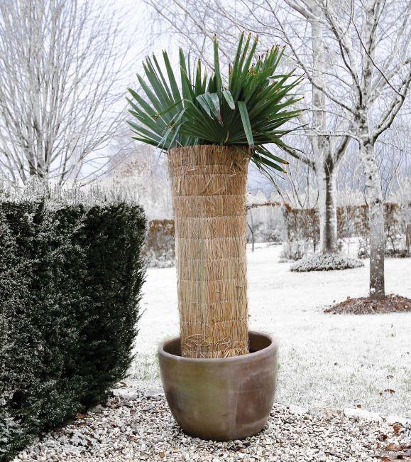 Nature Winterbeschermingsmat 1x1.5m - 2cm