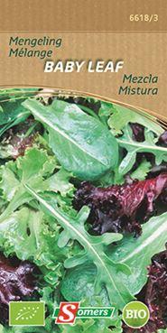 Somers Sla - Baby Leaf spicy mengeling