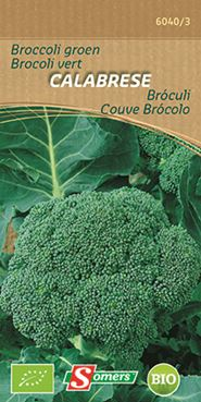 Broccoli 'Calabrese' (Bio)