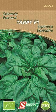 Spinazie 'Tarpy F1' (bio)