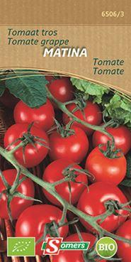 Tros tomaat Matina