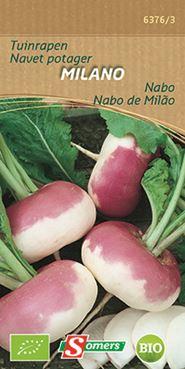 Tuinraap 'Milano' (Bio)