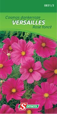 Somers Cosmos 'Versailles'