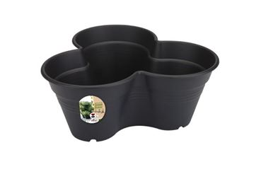 Kweekset 26cm  living black Green basics