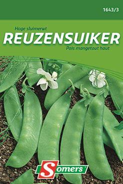 Somers Sluimerwt 'Reuzensuiker'