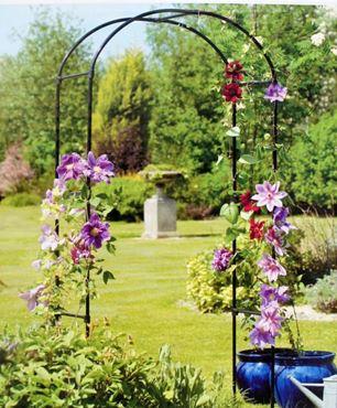 Rozenboog Garden Arche
