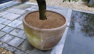 Plantbeschermingsschijf kokos Ø30cm set à 3 stuks