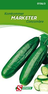 Komkommer 'Marketer'