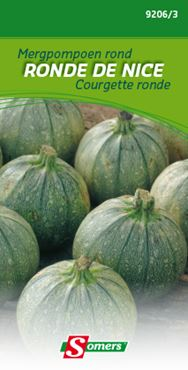 Somers Courgette 'Ronde de nice'
