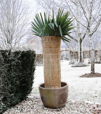 Winterbeschermingsmat 1x1.5m - 2cm