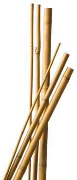 Bamboestok 90 cm d8-10mm 7x