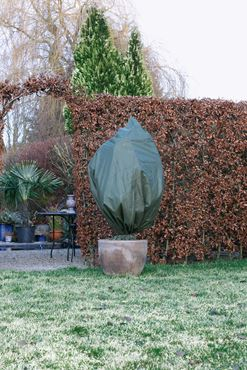 Winterafdekhoes 1.50mxd0.75m groen