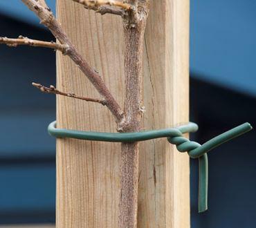 Nature Rubberband met draad in kern d 6 mm