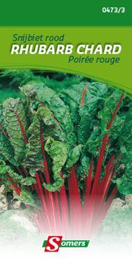Snijbiet 'Rhubarb Chard'